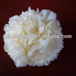 Dried white fungus/tremella/white fungus/silver ear