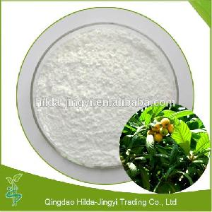 Supply high quality loquat leaf extract powder ursolic acid