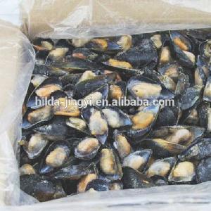 Half Shell Mussel Frozen Mussel