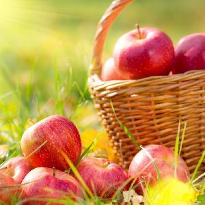 Super quality good taste Huaniu apple