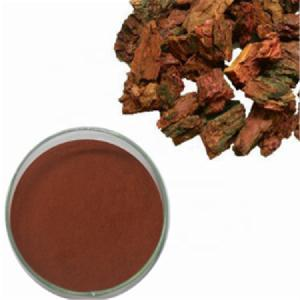 Factory supply Pine Bark Extract 95% proanthocyanidins