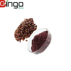 Hot selling Supply Pure Grape Seed/Leaf Extract Fruit Powder
