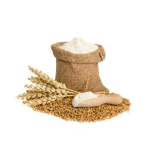 High Quality Wheat Grain from Argentina Whole Wheat