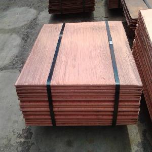 Cheap price 99.99% pure copper cathode / cathode copper