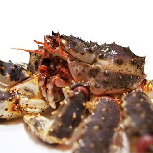 Live and Frozen King Crab for sale, Live/Frozen, RED King Crab, Alaskan King Crabs From USA