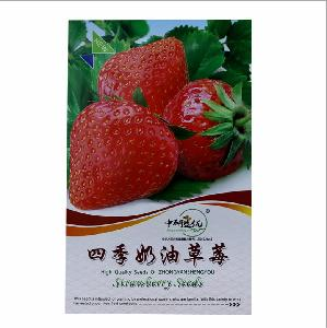 Touchhealthy supply suit for plant 4 seasons good taste red strawberries seeds/Strawberry seeds 100 seeds/bags