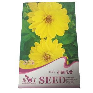 Yellow  flower Dahlia pinnata seeds/Dahlia hybrida seeds with small flower seeds bags $0.59/bags
