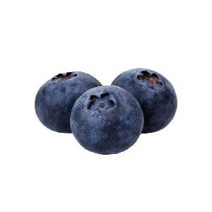 China bulk fresh fruit frozen wild iqf blueberry