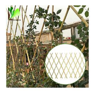 Factory Direct cheap bamboo cane trellis  fence  for gaiden