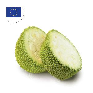 YOUNG JACKFRUIT In Brine Wholesale From Sri Lanka Asia Best Export for Europe