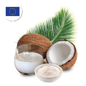 Bulk Price Coconut Milk for Europe