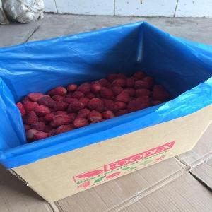 Egypt ian Frozen strawberries For  Juice  With Excellent Specifications
