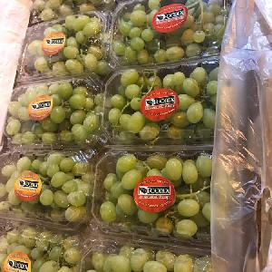 Egypian White Grapes, Early Sweet type, high quality