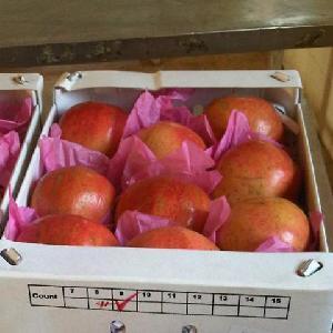 Fresh Pomegranate ready to export to  Azerbaijan