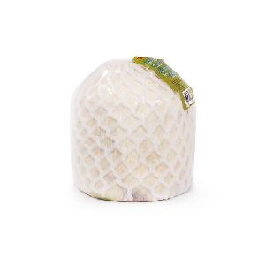 Premium quality young fresh green diamond cut coconut fruit for export