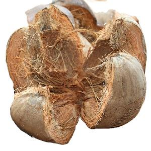 Coconut Coir Husk Raw for Export Cheap Price from Vietnam