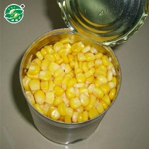 Advanced  equipment   hot   selling  best cheap price canned sweet kernel corn