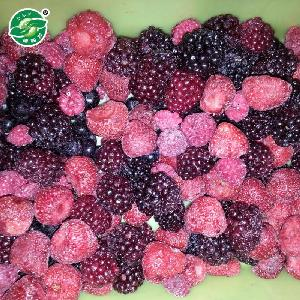 strict management pass KOSHER best price quality frozen mixed berries in packaging bag
