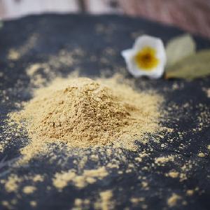 Dried boletus edulis porcini powder