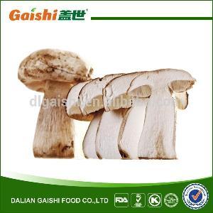 Bulk package Whole Crop Organic Dried Porcini Mushroom Slice Wild Funghi Porcini Manufacturer