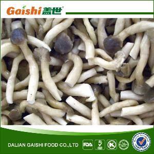 IQF Frozen Pleurotus Cornucopiae/Shimeji Mushroom