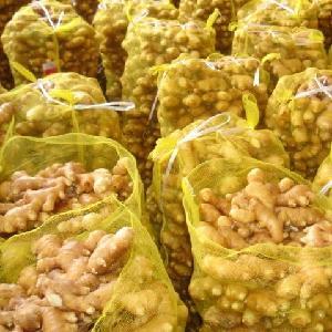new crop Wholesale fresh ginger for bangladesh