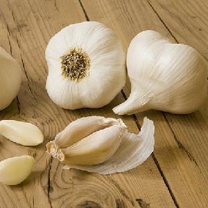 Normal white garlic fresh new crop 2020