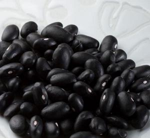 TTN Long and Round Black Kidney Beans