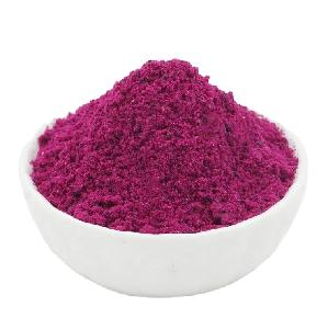 TTN 2020 Sale New Product dragonfruit Red Dragon Fruit Powder