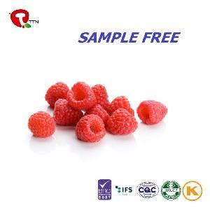 TTN Freeze  Dried   Fruit  Bulk  Wholesale   Dried   Fruit  Price Import  Dried   Fruit