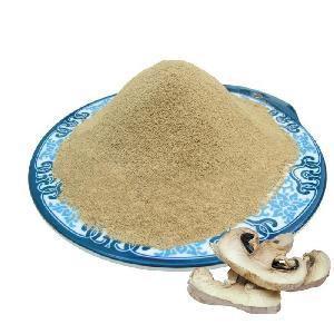 TTN China Suppliers Wholesale Freeze Dried Mushroom Powder