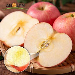 AGOLYN Chinese hot sale high quality fresh Red Fuji Apple