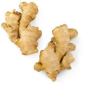New Crop fresh wholesale Ginger,100g/150g/200g/250g/300g, China/chinese mature Ginger supplier