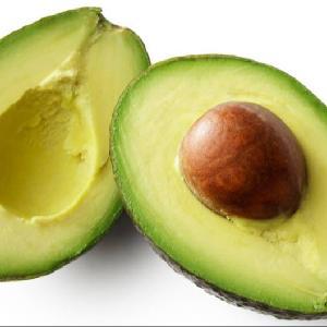 Fresh Fuerte  Avocado  for sale
