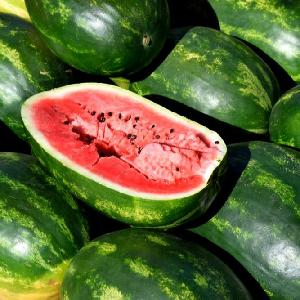 High quality Red  sweet   watermelon s