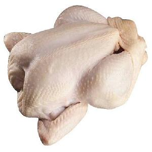 Halal Frozen WHOLE CHICKEN WINGS/MID-WINGS !!! PREMIUM SUPPLIER Buy quality