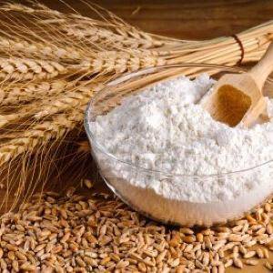 Wheat   Flour  High Quality Product ready for  export .