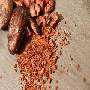 Raw Organic Cacao Nibs 100% Cacao Nibs