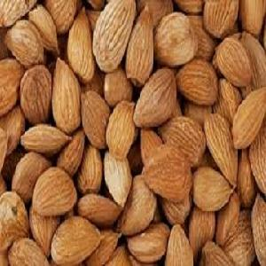 Free Sample Kernels Almond Wholesale Almond Nuts Price