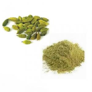 Wholesale High Quality Green Cardamom Supplier