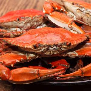Wholesale Frozen King Crabs / Live King Crab / King Crab Legs from EUROPE
