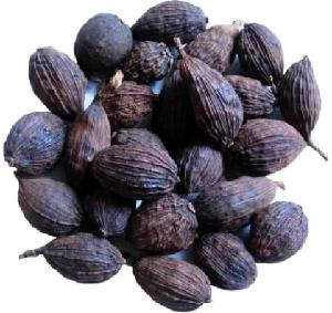 Available Dried whole black cardamom