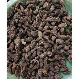 Dried and fresh Cardamom /Green and Black Cardamom