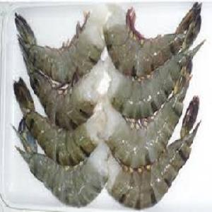 Frozen head on black tiger shrimp