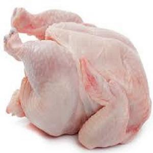 Certified Halal Frozen Chicken Feet Wholesale Price Frozen Chicken Paws Brazil