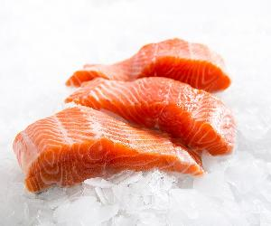 Fresh Atlantic Salmon fillet, HG Chum Salmon