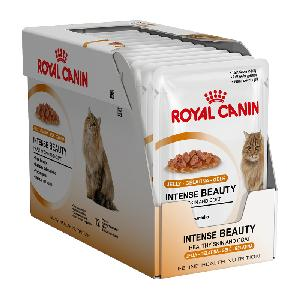 Royal Canin Fit 32 Dry Cats Foods/Pet Supplies For Sale