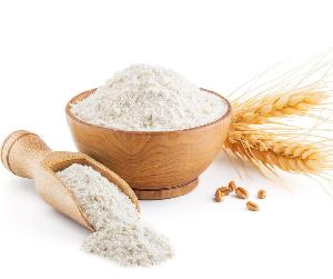 Fresh Wheat Flour Supplier - Top Quality Low Price