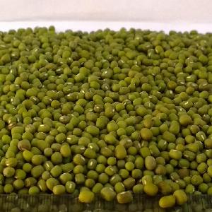 Green Mung Beans 3.25mm up Myanmar Origin