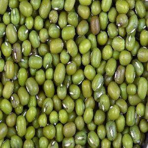 Green Mung Beans (Myanmar)